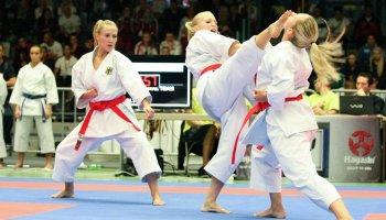Resultado de imagen de karate deportivo