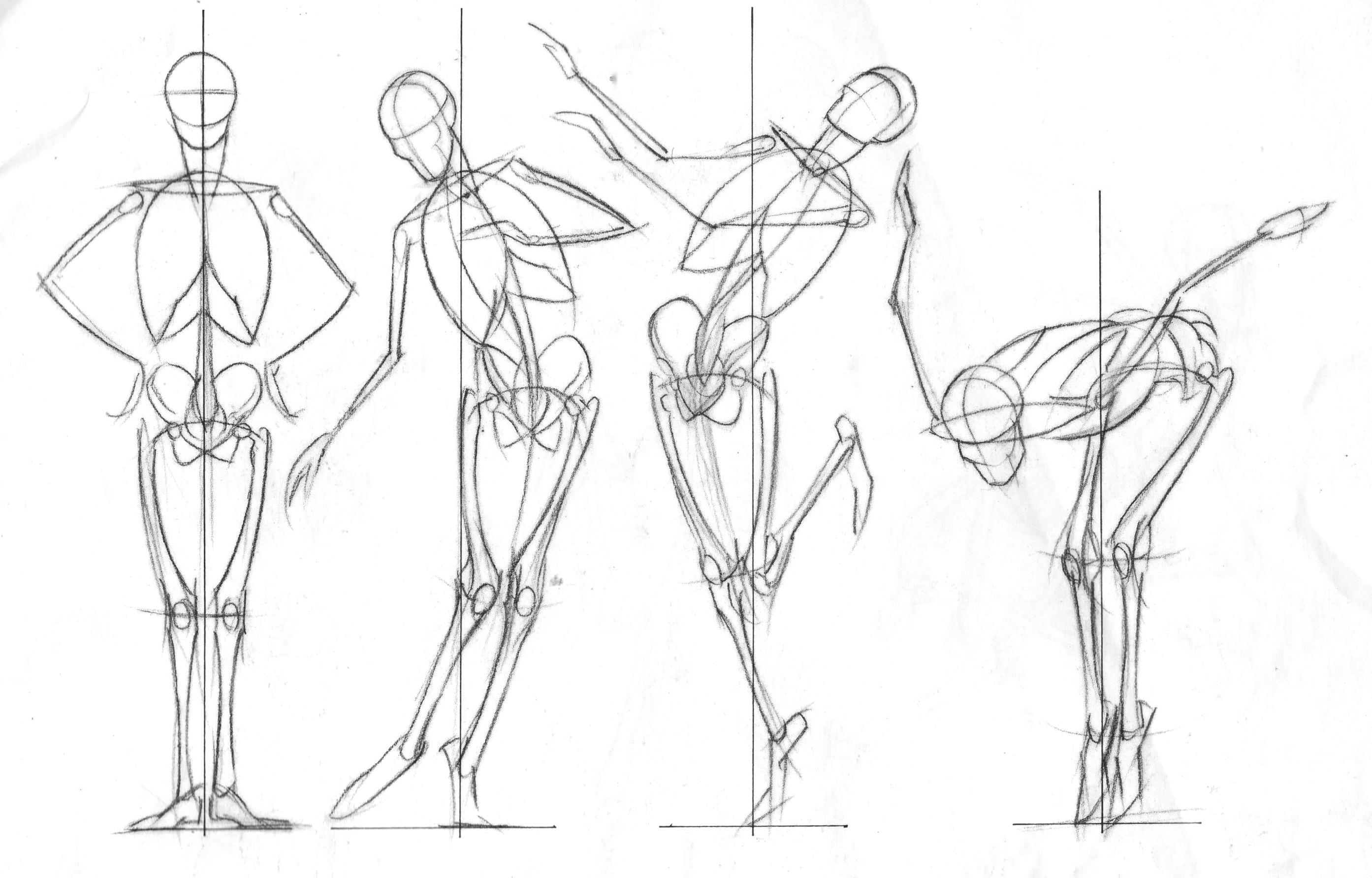 Magnífico De Dibujos Animados Anatomía Femenina Ilustración ...